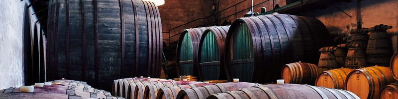 Sicily winery barrells
